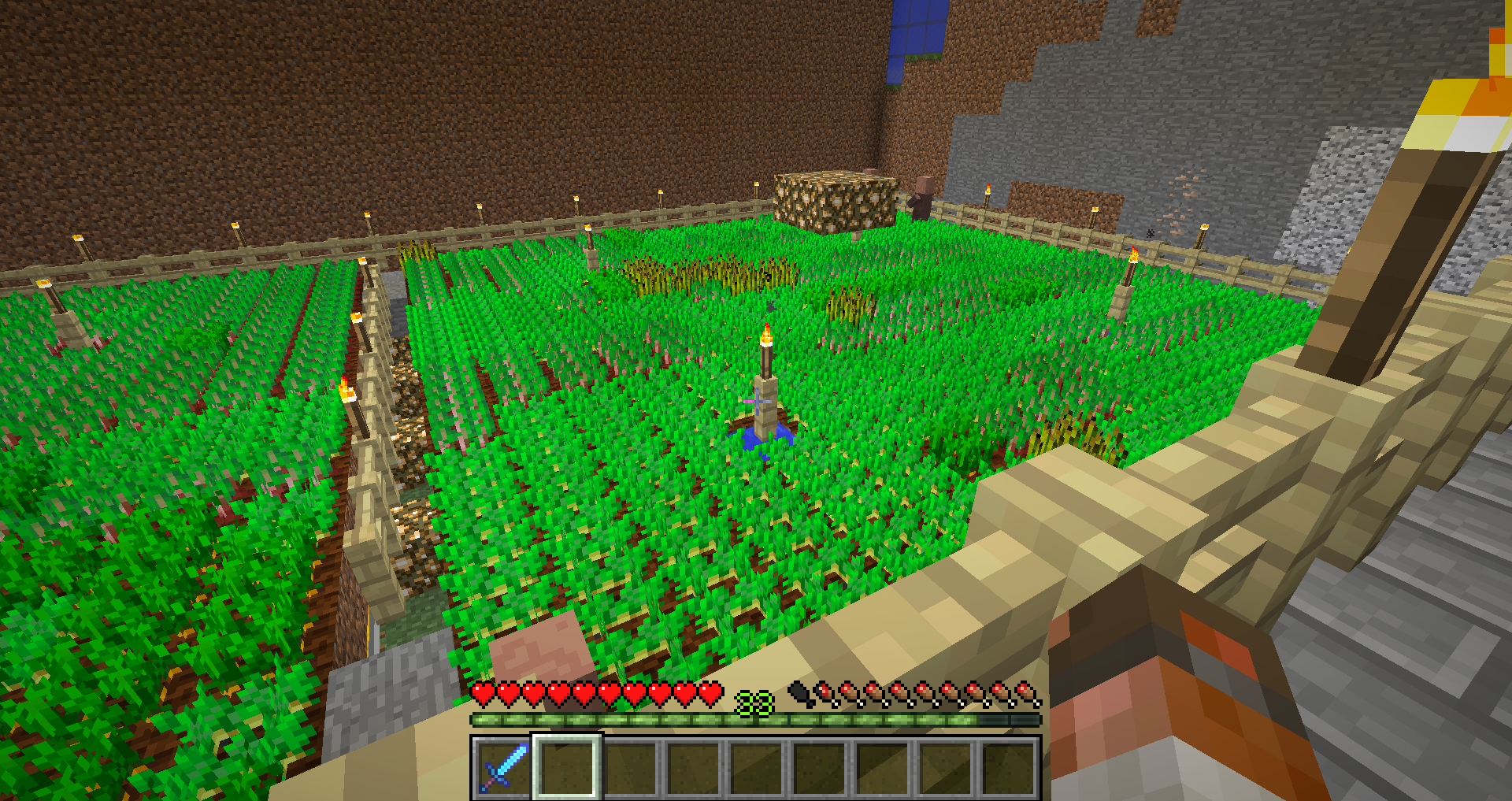 Villagers are not farming 1 12 - Survival Mode - Minecraft: Java