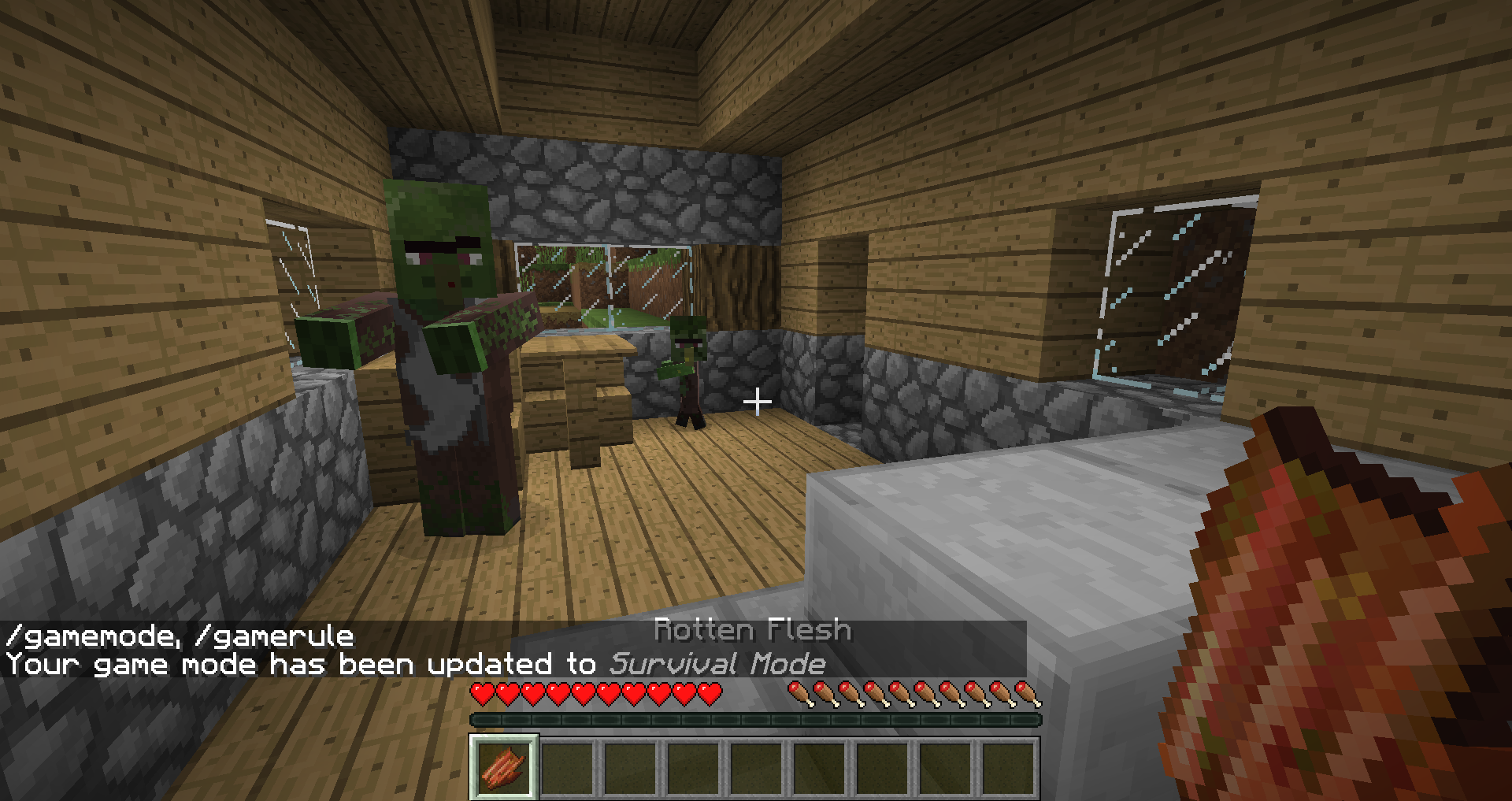 Why does this village have only zombie villagers? - Seeds