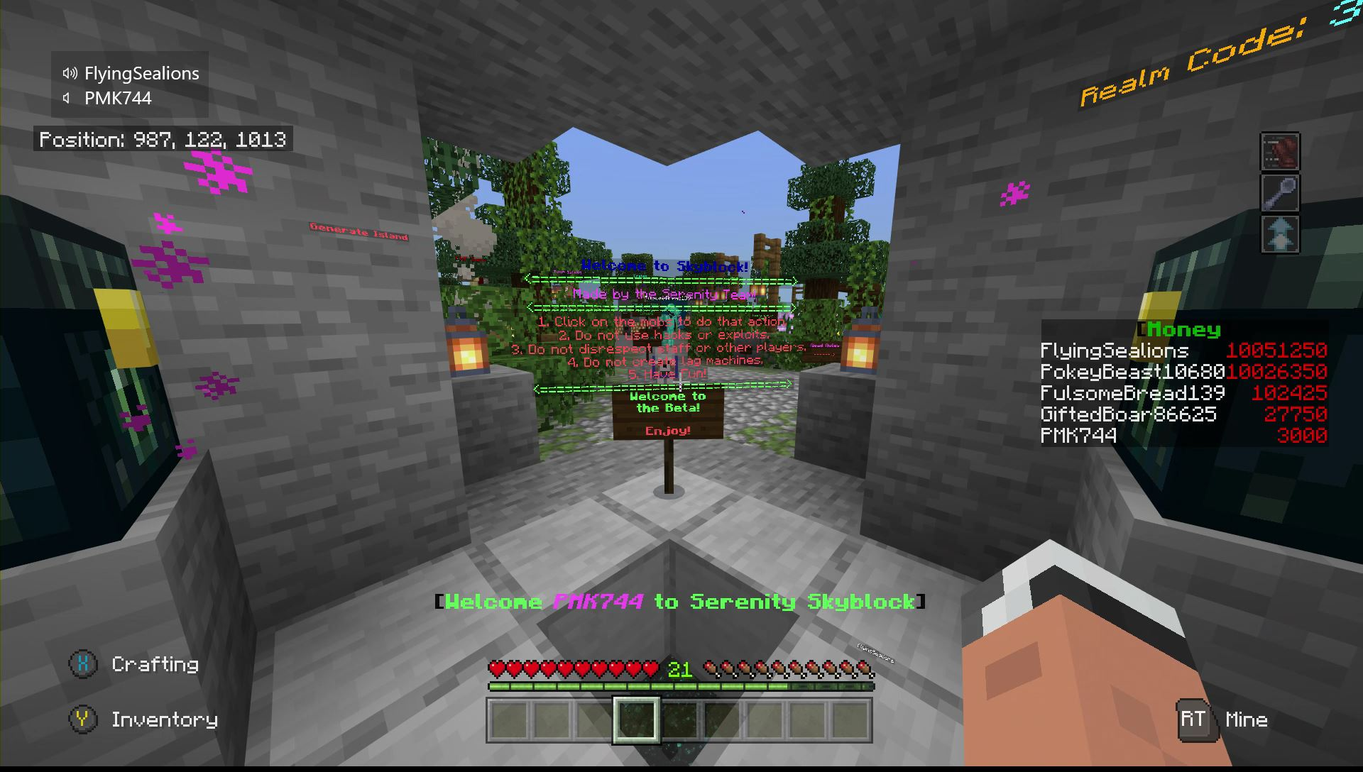 Skyblock Survival Realm - Island Teaming Allowed! - [CODE