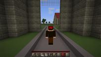Minecraft skin back