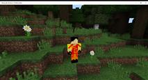 Minecraft_ Windows 10 Edition Beta 11_12_2015 8_12_48 PM