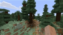 forest golden apple