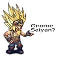 gnomeSaiyan