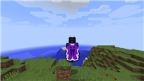 elytra wing 2 picture 2