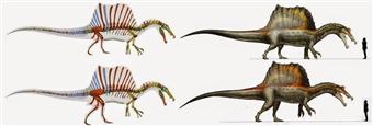 Sereno's Spinosaurus and Scott's Spinosaurus