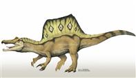 spinosaurus_aegyptiacus_by_camusaltamirano-d638ge8