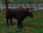 Auroch from zoo tycoon 2