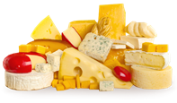 about-cheese