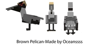 Brown Pelican Dossier