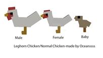 Leghorn chicken dossier