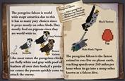 Peregrine Falcon Dossier