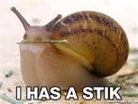 I has a stick