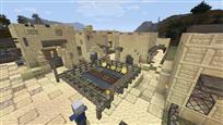 Village overview