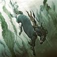 542b3c3b19b8a126269c70ef750967b7--equine-art-fantasy-creatures
