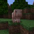 pig-1538162979