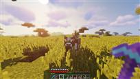 Minecraft 1.12.2 16_01_2019 3_58_08 AM