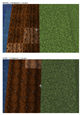 Textures_BEFORE_and_AFTER_Field_and_Grass