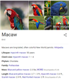 Correction, MACAW