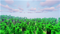 The result of your texture pack with shaders