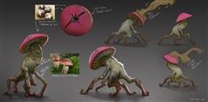 joshua-culp-mushroom-breakdown