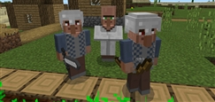 villager-guards-2-2