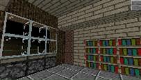 House with large bookshelf