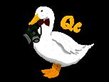 qclogo