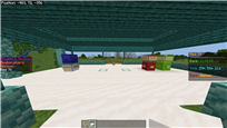 Minecraft (5)