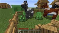 Weird Minecraft Picture