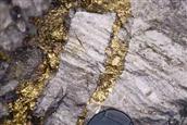 gold-vein