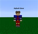 Default Steve