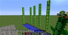 Bamboo Side