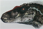 malevelociraptor[1]