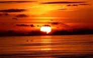 red-sunset-ocean-c-e-ibackgroundz.com