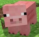 View porkchoper's Profile