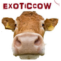 View ExoticCows's Profile