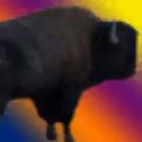 View Raidingbuffalo's Profile