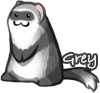 View GreyD's Profile