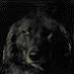 View Zephar's Profile
