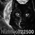 View Nightwolf22500's Profile