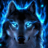 View WolfBloodmWg's Profile