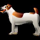 View Samthedogg's Profile