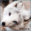 View Tsukoyami's Profile