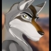 View wolf421's Profile