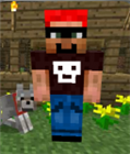 View Theminecraftcommando's Profile