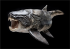 View dunkleosteus's Profile