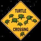View turtle2472's Profile