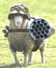 View Sheepslayer64's Profile