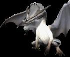 View Suchomimus12's Profile