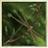 View frozen_arrow's Profile